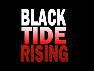 Black Tide Rising - by John Ringo
