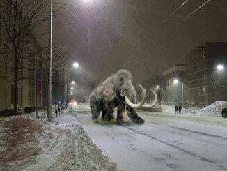 Mastodon on the Loose
