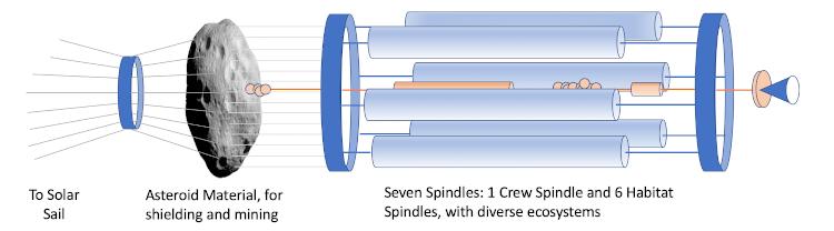 Daedalus Seven Generation Ship
