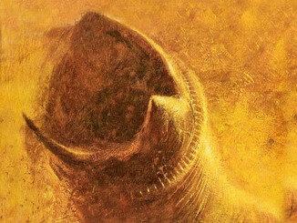 Dune, art by John Schoenherr